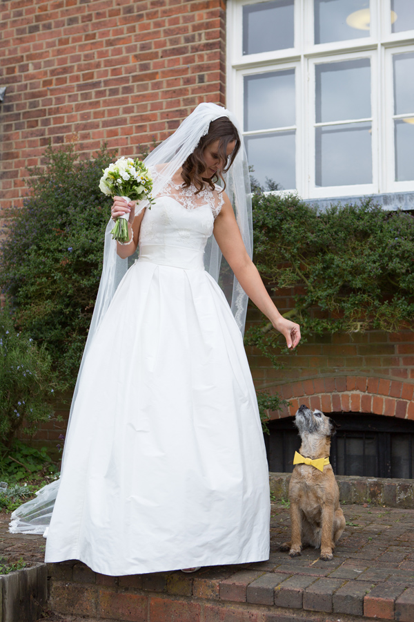 Hayley Ruth Photography , SturmerHall, bride and pup in yellow bow tie, stephanie allin dress, yellow and cream bouquet
