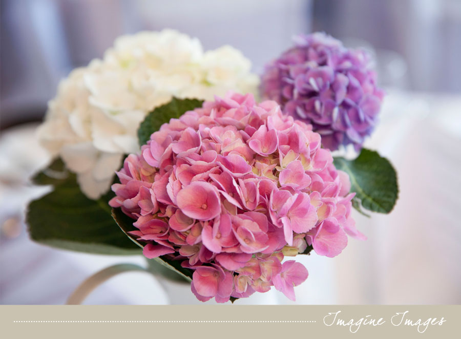 wedding flowers, lochgreen house, imagine images