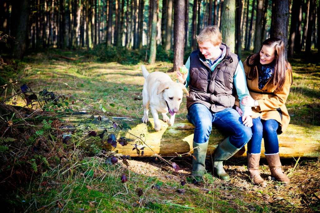 woodland engagement shoot, labrador, courtney louise photography