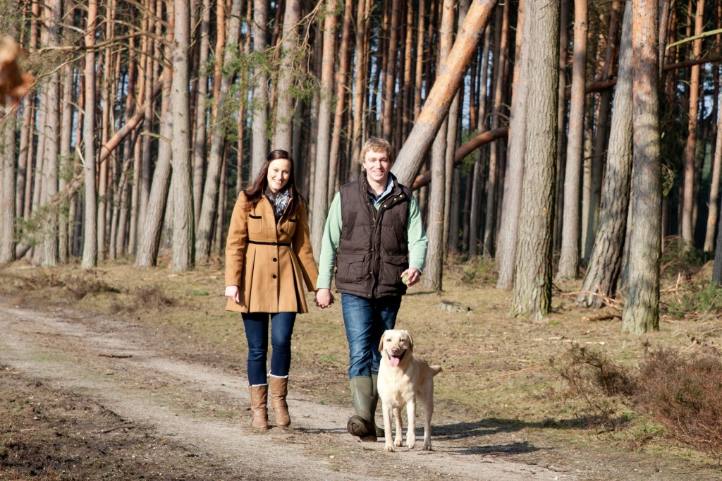 Courtney Louise Photography, Woodland Engagement Shoot, labrador
