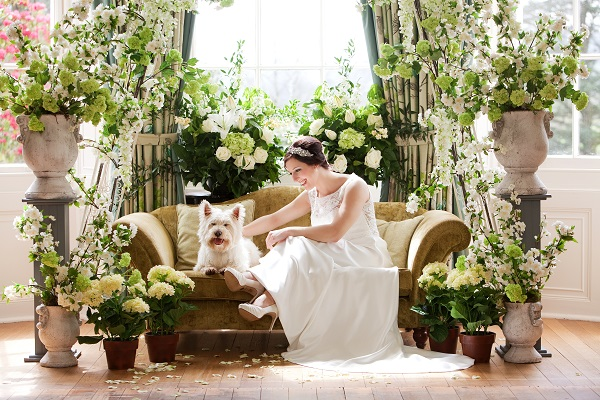 deer park, Top Tips For Planning A Garden Wedding, Advice by hazel parsons,  Image b y Firetop Photography