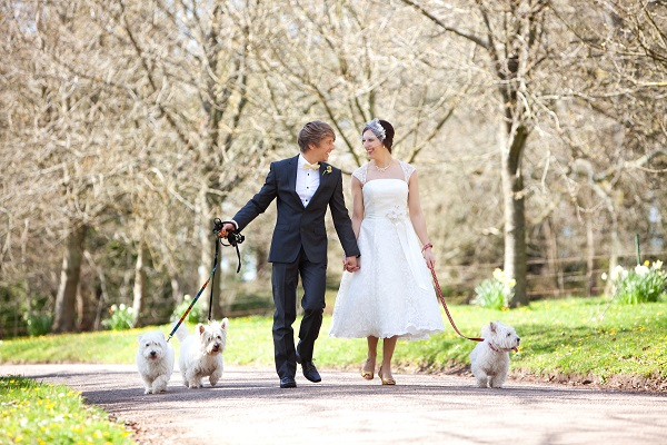 deer park, Top Tips For Planning A Garden Wedding, Advice by hazel parsons, Image by Firetop Photography