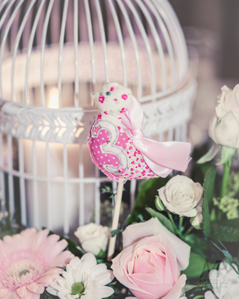 A lovebird theme wedding with a maggie sottero dress diy elements 228 liam and carlys fine art wedding photography at ringwood hall hotel by pamela and mark junglespirit Gallery