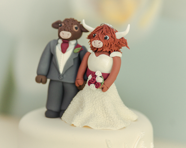 MrsPandPs Sunday Morning Cuppa, Wedding, Blog Blog Catch Up, April 26th 2015, cow theme wedding , red colour palette, wheatsheaf touches, kelham house hotel, M.P Media photography, cow bride and groom cake topper