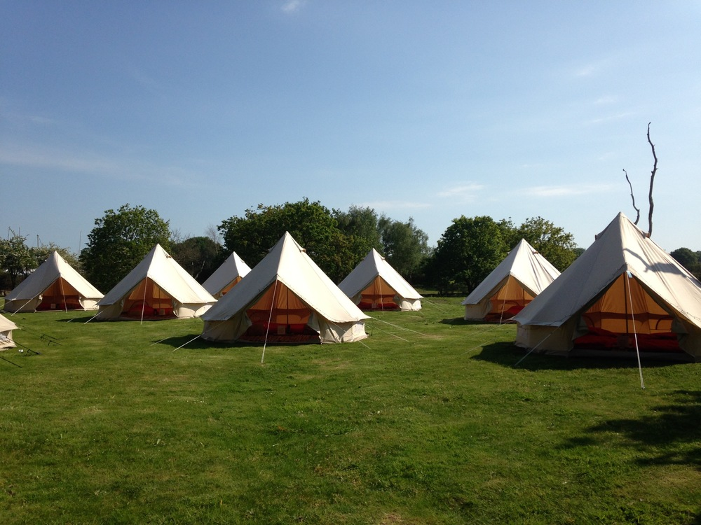 Glamping for guests, tournerbury woods estate