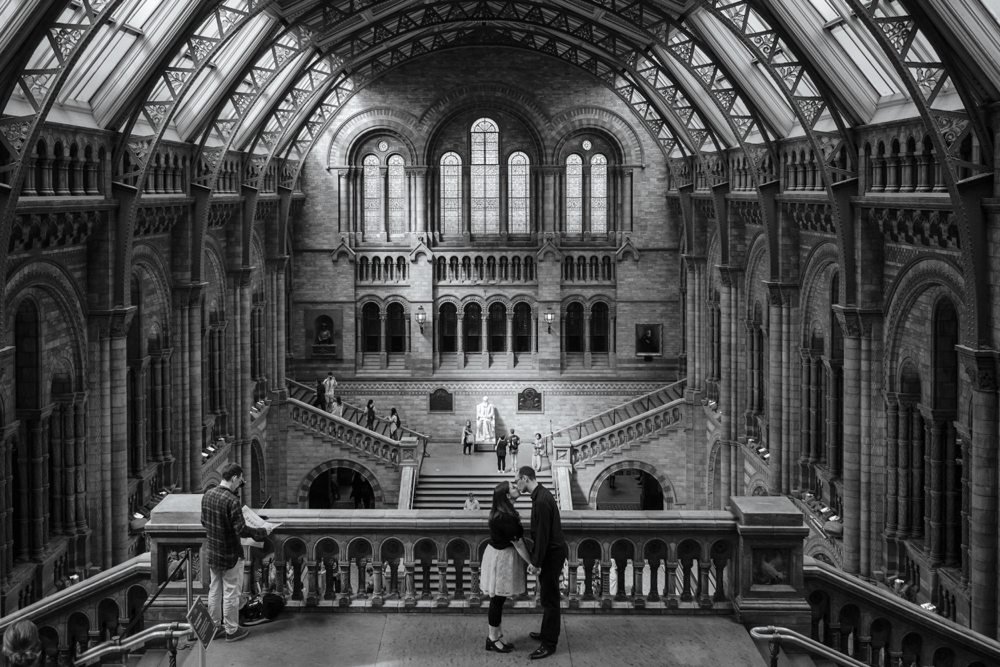 natural-history-museum-engagement-shoot-london-engagement-shoot-peacock-obscura-photography-14