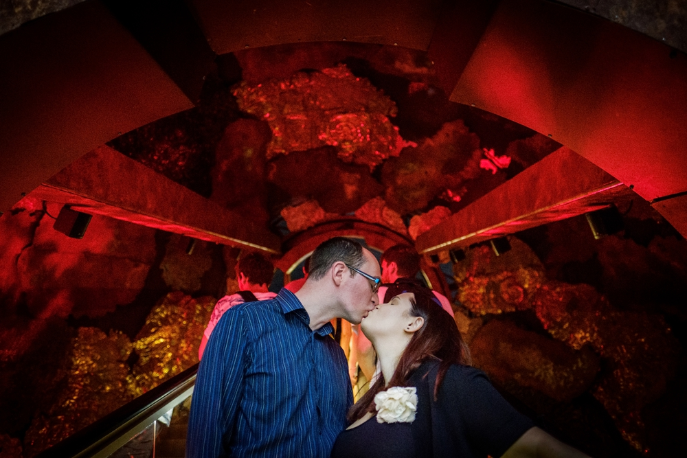 natural-history-museum-engagement-shoot-london-engagement-shoot-peacock-obscura-photography-2